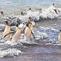 Emperor Penguins by Alan M Hunt