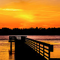 Empire Docks by Angus Hooper Iii