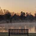 Empty Bench At Misty City Park Lake by Philip Rodgers