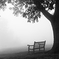 Empty Bench by Monte Stevens