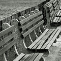 Empty Benches by Alex Galkin