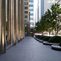 Empty Chicago Sidewalk by Ely Arsha