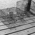 Empty Crab Traps by Gregory Smith