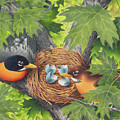 Empty Nest by Mike Farrell