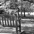 Empty Park Bench by Phil Perkins