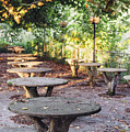 Empty Picnic Tables In The Early Fall With Fallen Leaves by Alexandre Rotenberg