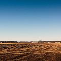 Empty Potato Fields by Jukka Heinovirta