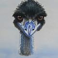 Emu by Louise Andersen