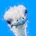 Emu Painting by Jan Matson