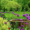 Enchanted Garden by Byron Varvarigos