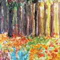 Enchanted Woods by Trilby Cole