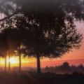 Enchanting Morning Sunrise by Mary Lou Chmura