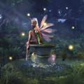 Enchantment - Fairy Dreams by Melissa Krauss