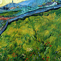 Enclosed Wheat Field With Rising Sun, By Vincent Van Gogh, 1889, by Peter Barritt