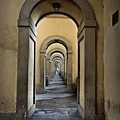 Endless Arches by Patricia Strand