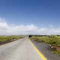 Endlkess Road  by Gal Eitan