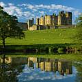 England, Northumberland, Alnwick Castle by Jason Friend