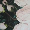 Englische Rosen by Eckhard Besuden