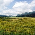 English Countryside by Melissa Stephenson