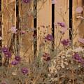 English Garden In Pastels by Susan Maxwell Schmidt