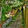 English Gardens by Carol Christopher