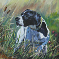 English Pointer In The Field by Lee Ann Shepard