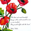 English Poppy   Poem by Karin  Dawn Kelshall- Best