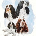 English Springer Spaniel W/ghost by Barbara Keith