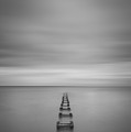 Enjoy The Silence Vertical  by Michael Ver Sprill