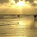 Enjoying The Beach At Sunset by Jennifer White