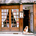 Entrance Paris France by Panoramic Images