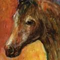 Equine Horse Painting  by Svetlana Novikova