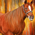 Equine Prestige - Horse Paintings by Lourry Legarde
