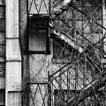 Escape by Karol Livote