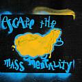 Escape The Mass Mentality by JoAnn Lense