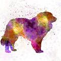 Estrela Mountain Dog In Watercolor by Pablo Romero
