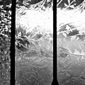 Etched In Glass by Laura DAddona