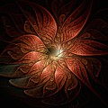 Etched Petals by Amanda Moore