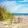 Etchings In The Sand by Debra and Dave Vanderlaan