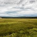 Eternal Yellowstone by Belinda Greb
