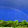 Etowah Rainbow by Pat Turner