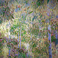 Eucalyptus 012 by Ron Evans