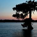 Evening At Lake Martin 1 by Nicholas Blackwell