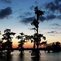 Evening At Lake Martin 2 by Nicholas Blackwell