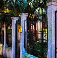 Evening Fence And Gate - Nola by Kathleen K Parker