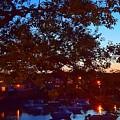 Evening Harbor Lights by Harriet Harding