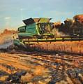 Evening Harvest by Spencer Meagher