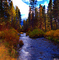 Evening Hatch On The Metolius River Photograph by Diane E Berry