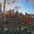 Evening In Central Park by Brandon Stevens