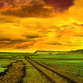 Evening In Masai Mara by Charuhas Images